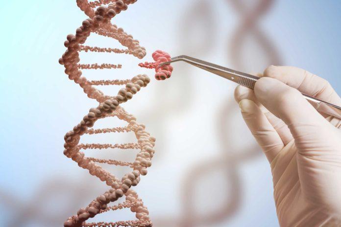 La terapia génica abre nuevas puertas terapéuticas para diversos tipos de padecimientos.